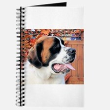 Mae Saint Bernard Photo-6 Journal
