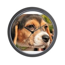 Chloe Beagle Photo-19 Wall Clock