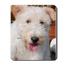 Hailey Wire Fox Terrier Photo Mousepad