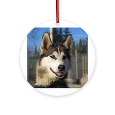 Ziggy Ornament (Round)