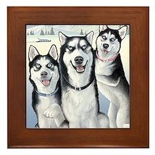 Three Huskies Framed Tile