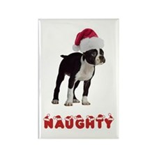Naughty Boston Terrier Rectangle Magnet