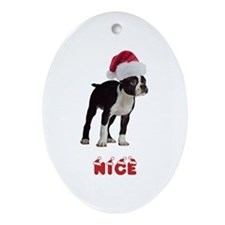Nice Boston Terrier Ornament (Oval)