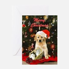 Golden and Kittens Christmas Card Greeting