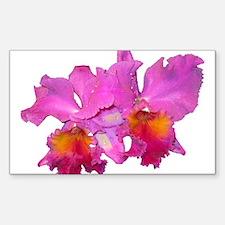 Pink Cattleya Rectangle Sticker 50 pk)