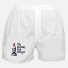 Oh Gnome You Didn't Boxer Shorts
