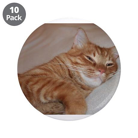 "Cat Nap 3.5"" Button (10 pack)"