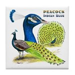 Peacock in Blue Tile Coaster