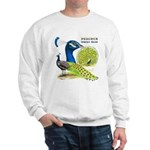 Peacock in Blue Sweatshirt