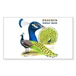 Peacock in Blue Rectangle Sticker 50 pk)