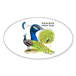Peacock in Blue Oval Sticker (50 pk)