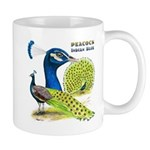 Peacock in Blue Mug
