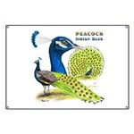 Peacock in Blue Banner