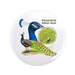 "Peacock in Blue 3.5"" Button (100 pack)"