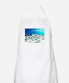 Dolphins BBQ Apron