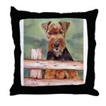 Throw Pillow Airdale