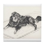 Tile Coaster Border Collie
