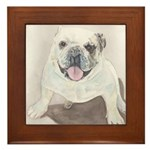 Framed Tile Bull dog