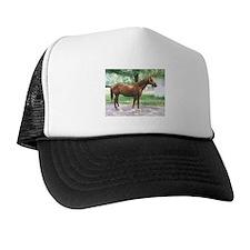FERDINAND Trucker Hat
