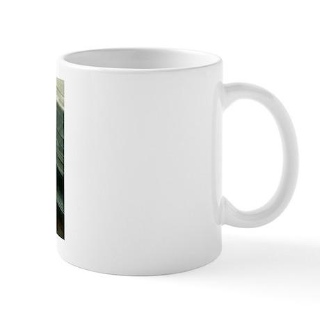 bbs4 Mugs