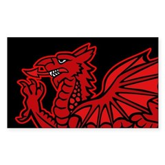 Colored Dragon vinyl Rectangle Decal