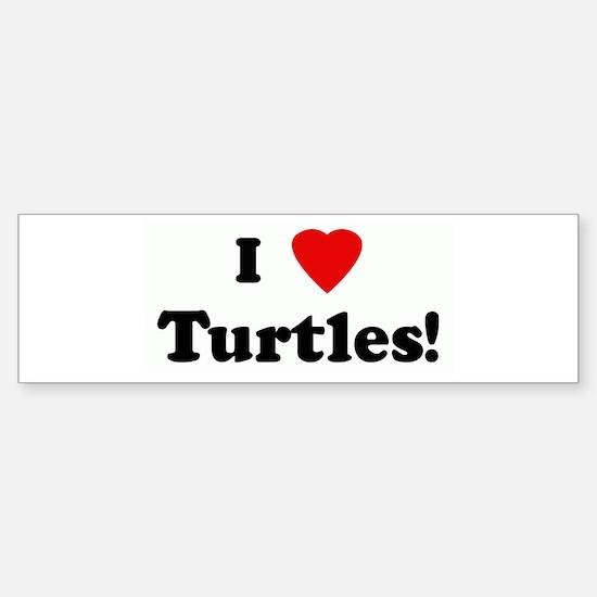 I Love Turtles! Bumper Bumper Bumper Sticker