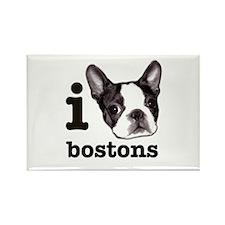 """""""I Love Bostons"""" Rect Magnet (10 pack)"""