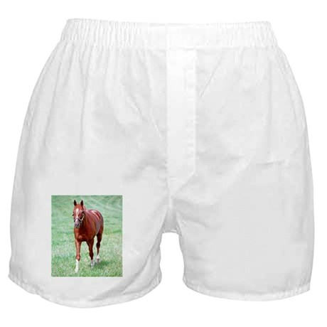 CHARISMATIC Boxer Shorts