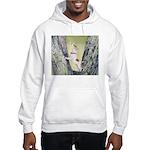 Hooded Sweatshirt Jack Russell