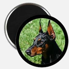 Doberman Pinscher Dog Magnet