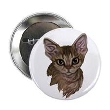 Devon Rex Cat Button