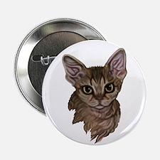 Devon Rex Cat Button