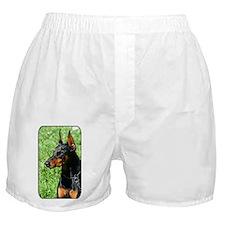 Doberman Pinscher Dog Boxer Shorts
