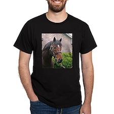FUSAICHI PEGASUS T-Shirt