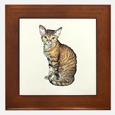 Devon Rex Cat Framed Tile