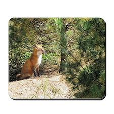 Noble Fox Mousepad
