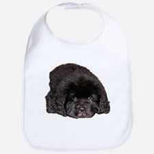 Newfoundland Puppy Dog Bib