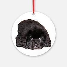 Newfoundland Puppy Dog Ornament (Round)