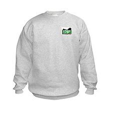 179 PLACE, QUEENS, NYC Sweatshirt