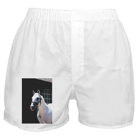 ALPHABET SOUP Boxer Shorts