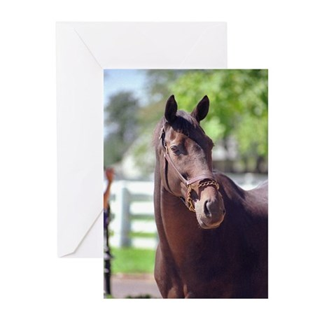 FOREGO Greeting Cards (Pk of 10)