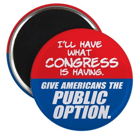 "SUPPORT THE PUBLIC OPTION 2.25"" Magnet (10 pa"