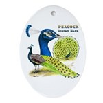 Peacock Indian Blue Oval Ornament