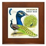 Peacock Indian Blue Framed Tile
