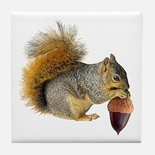Squirrel Eating Acorn Tile Coaster