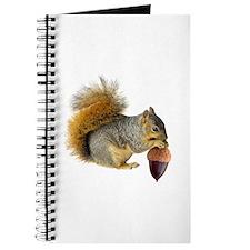 Squirrel Eating Acorn Journal