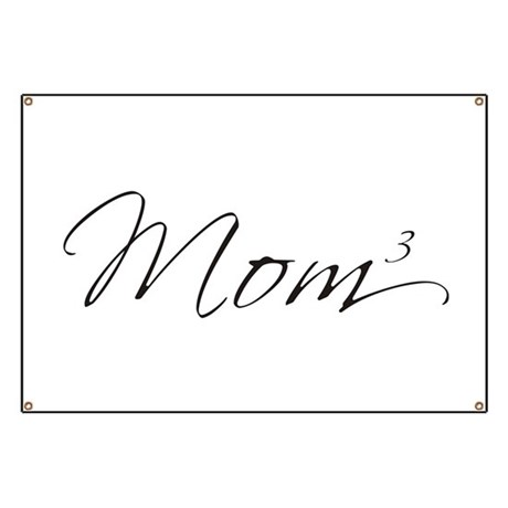 Mom of 3 Banner