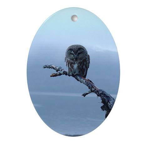 Snowy Saw-whet Owl Oval Ornament