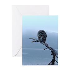 Snowy Saw-whet Owl Greeting Card