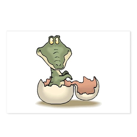 Alligator Baby Hatching Postcards (Package of 8)